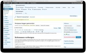 Wordpress scherminstellingen voor blogpost bewerkpagina